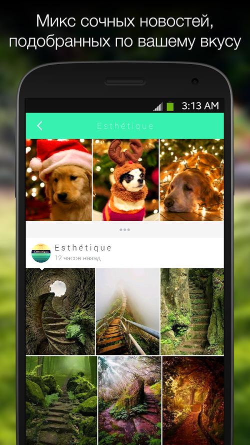 Мята приложение для андроид скачать бесплатно